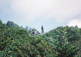 41-4_姫岩-2